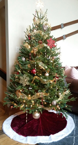 your christmas vacation will feel more like home with a real christmas tree set up in your condo or vacation rental we set up either 6 or 8 foot real - Rent A Decorated Christmas Tree